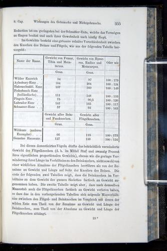 Image of Darwin-F914.1-1868-00355