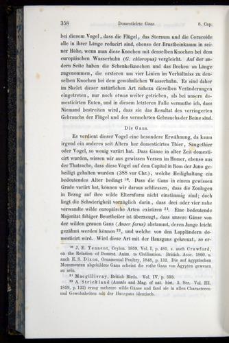 Image of Darwin-F914.1-1868-00358