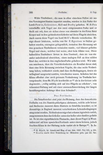 Image of Darwin-F914.1-1868-00366