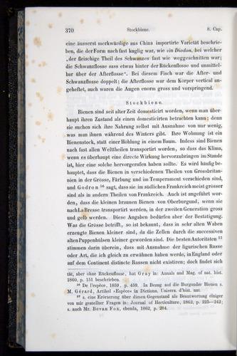 Image of Darwin-F914.1-1868-00370