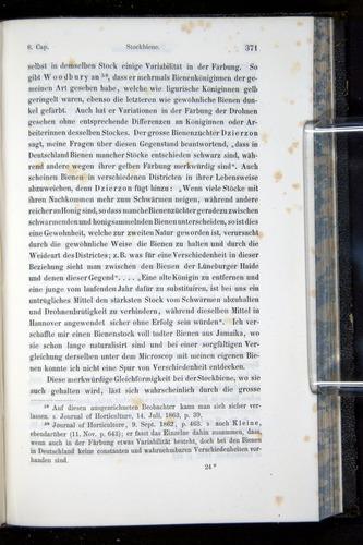Image of Darwin-F914.1-1868-00371