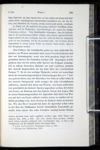 Image of Darwin-F914.1-1868-00395