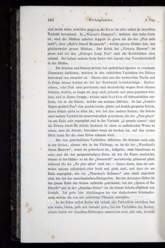 Image of Darwin-F914.1-1868-00410