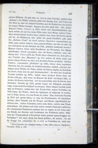 Image of Darwin-F914.1-1868-00419