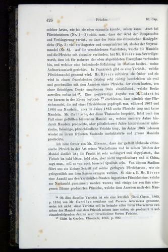 Image of Darwin-F914.1-1868-00426