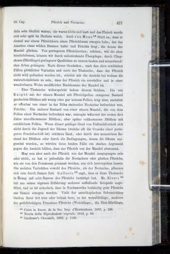 Image of Darwin-F914.1-1868-00427