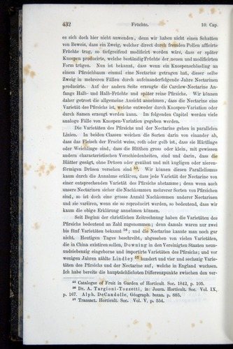 Image of Darwin-F914.1-1868-00432