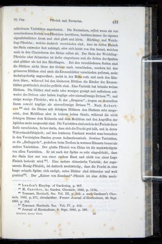 Image of Darwin-F914.1-1868-00433