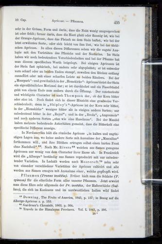 Image of Darwin-F914.1-1868-00435
