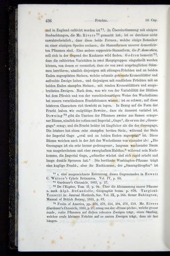 Image of Darwin-F914.1-1868-00436