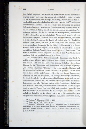 Image of Darwin-F914.1-1868-00438