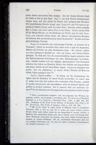 Image of Darwin-F914.1-1868-00440