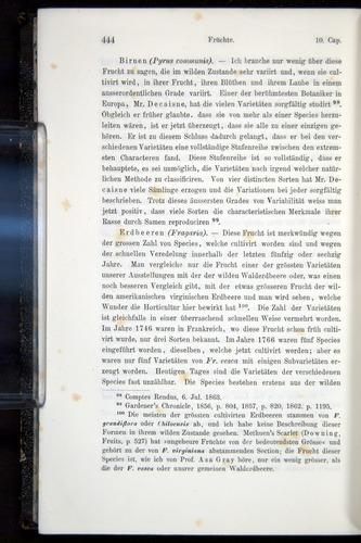 Image of Darwin-F914.1-1868-00444