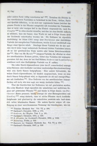 Image of Darwin-F914.1-1868-00447