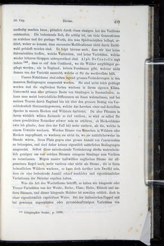 Image of Darwin-F914.1-1868-00459