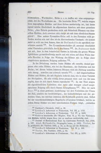 Image of Darwin-F914.1-1868-00460