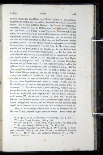 Image of Darwin-F914.1-1868-00465
