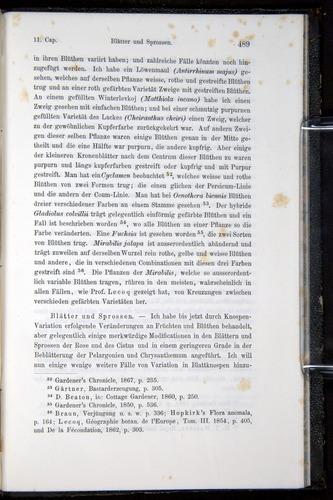 Image of Darwin-F914.1-1868-00489