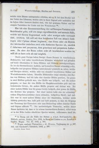 Image of Darwin-F914.1-1868-00497