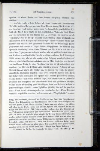 Image of Darwin-F914.1-1868-00501