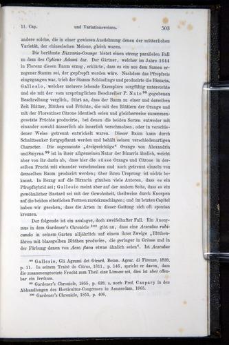 Image of Darwin-F914.1-1868-00503
