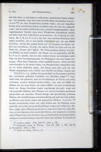 Image of Darwin-F914.1-1868-00505