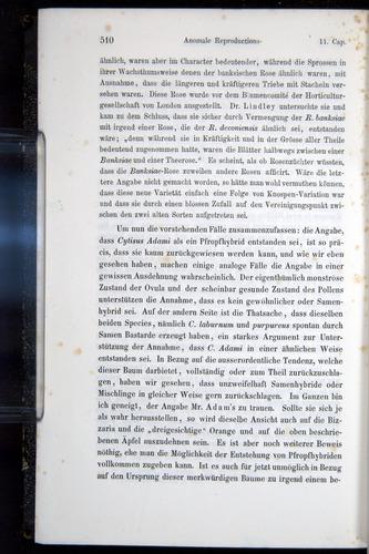 Image of Darwin-F914.1-1868-00510