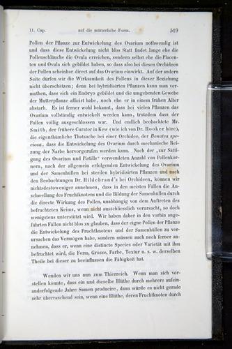 Image of Darwin-F914.1-1868-00519
