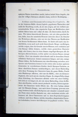Image of Darwin-F914.1-1868-00522