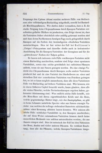 Image of Darwin-F914.1-1868-00524