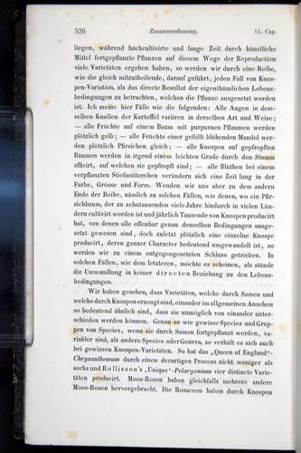 Image of Darwin-F914.1-1868-00526