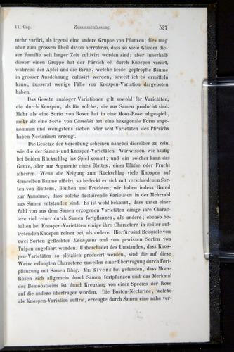 Image of Darwin-F914.1-1868-00527