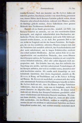 Image of Darwin-F914.1-1868-00528