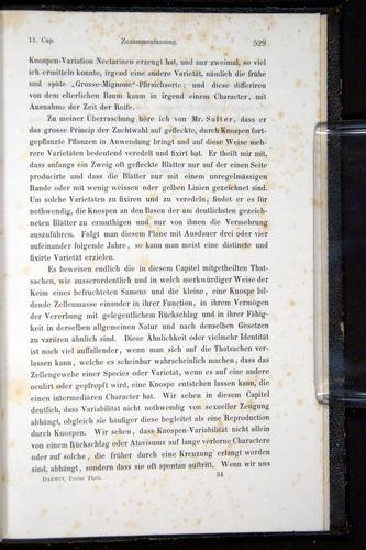 Image of Darwin-F914.1-1868-00529