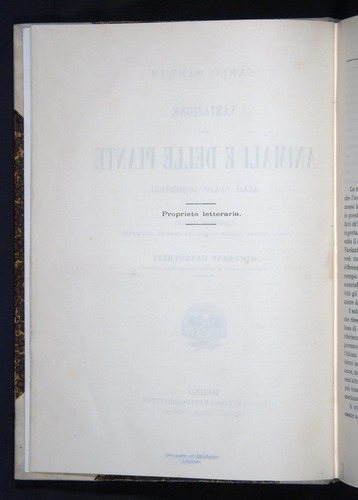 Image of Darwin-F920-1876-000-tp2v
