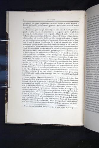 Image of Darwin-F920-1876-008