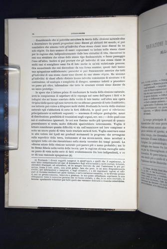 Image of Darwin-F920-1876-014