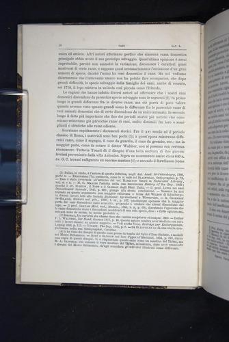 Image of Darwin-F920-1876-016