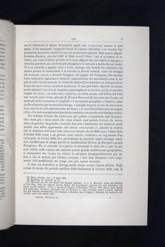 Image of Darwin-F920-1876-017