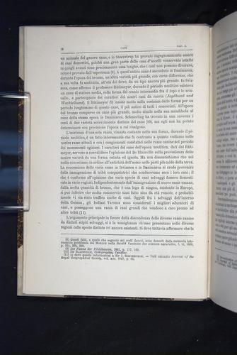 Image of Darwin-F920-1876-018