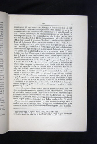 Image of Darwin-F920-1876-019