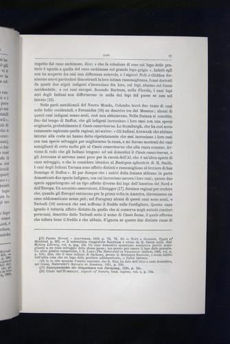 Image of Darwin-F920-1876-021