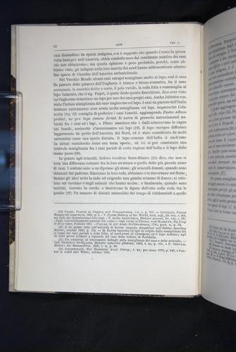 Image of Darwin-F920-1876-022