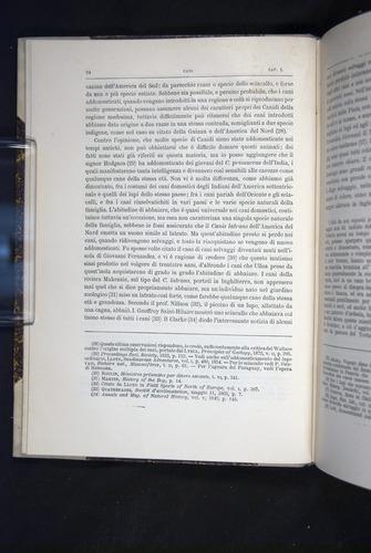 Image of Darwin-F920-1876-024