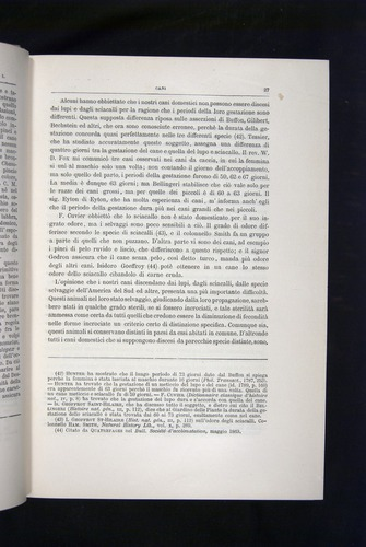 Image of Darwin-F920-1876-027