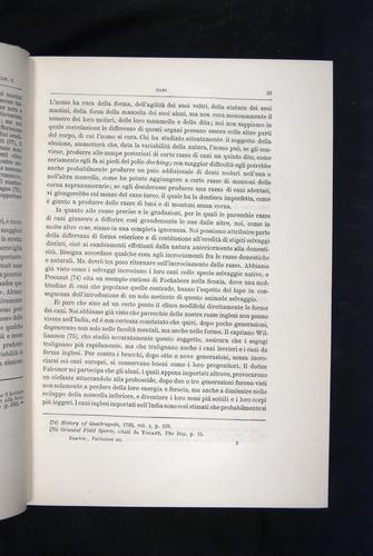 Image of Darwin-F920-1876-033