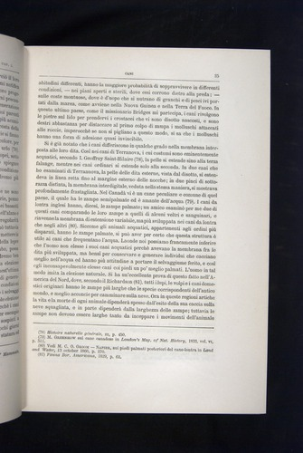 Image of Darwin-F920-1876-035