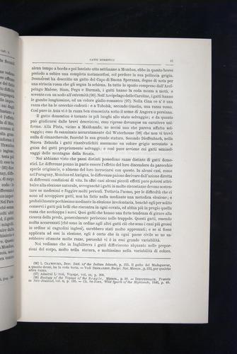 Image of Darwin-F920-1876-041