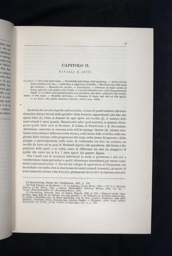 Image of Darwin-F920-1876-043