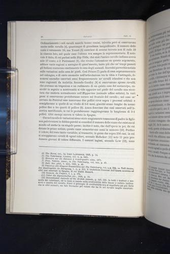 Image of Darwin-F920-1876-044
